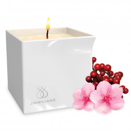Jimmyjane Afterglow Natural Massage Oil Candle Berry Blossom 127g