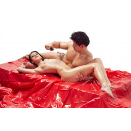Fetish Collection Vinyl Bed Sheet Red