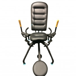 MOI Submission The BDSM Sex Chair
