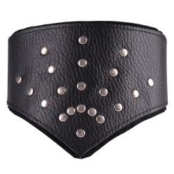 Dominate Me Leather V-Collar D42 Deluxe Black-Black