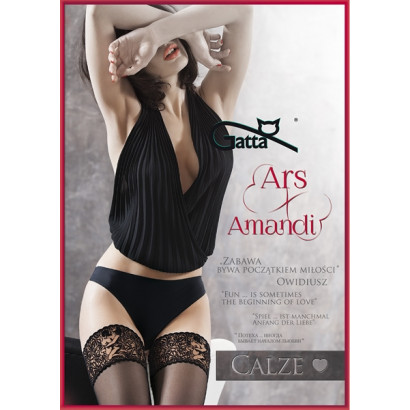 Gatta Ars Amandi Calze 02 - Samodržiace pančuchy s Kamasutra krajkou Nero Čierna