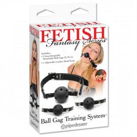 Fetish Fantasy Ball Gag Training System - Set Gags